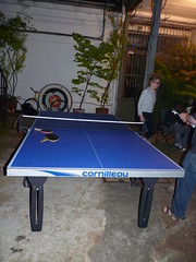 billiard room(0.0), pool(0.0), billiard table(0.0), carom billiards(0.0), indoor games and sports(1.0), individual sports(1.0), table tennis(1.0), sports(1.0), table(1.0), games(1.0),