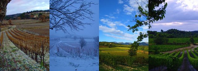 Through the Seasons-Fall, Winter, Spring, Summer