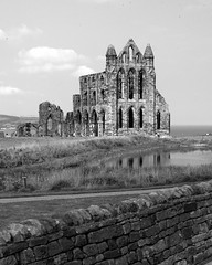 Whitby Abbey from the tour bus.