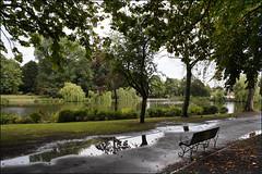 Handsworth Park Walk 8/10 (fv14)