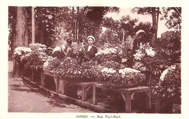 Hanoï - Rue Paul Bert - marché aux Fleurs