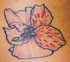 Lily Tattoo by Tim Baxley @