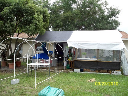 Florida Outdoor Backyard Hydroponic Greenhouse Friday