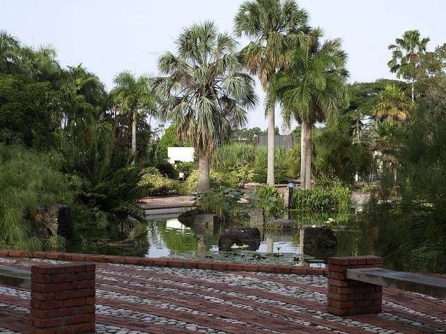 Jardin botanico nacional 2 flickr photo sharing for Jardin botanico nacional