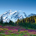 Mount Rainier in Fall color