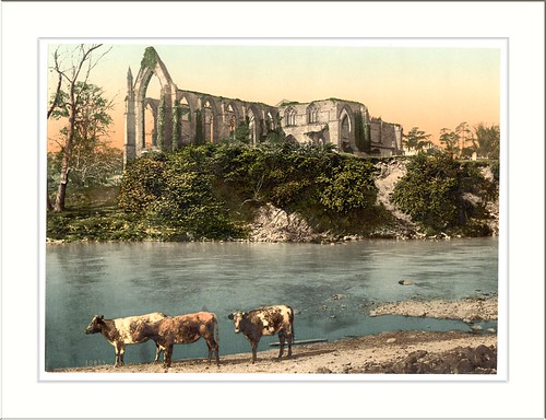 Abbey from the river Bolton England