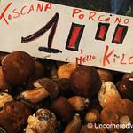 Porcini Season in Tuscany