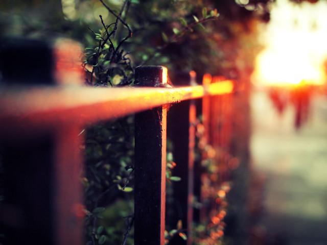 Molten fence