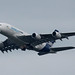 Small photo of Airbus Industrie A380-800(F-WWDD)