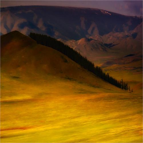 northwestmongolia