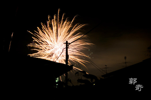 Backyard Fireworks Show  Flickr  Photo Sharing!