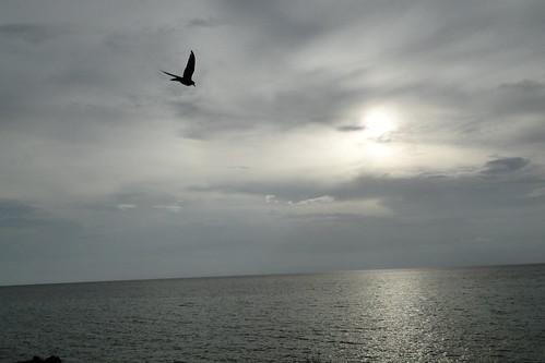 blue sol azul sunrise atardecer colombia sony paisaje cielo nubes isla oceano caribe sanandres palmero sanandrésisla hx1