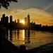 Chicago Skyline by Cassandra West