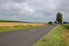 Route départementale D7, Bas-Rhin (67) - Photo of Morschwiller