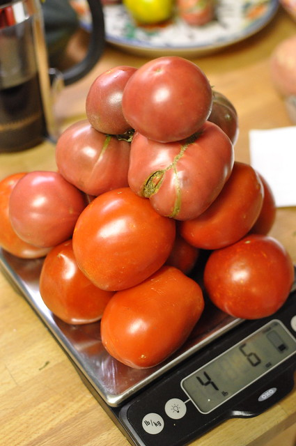 4 1/2 pounds of tomatoes
