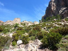 Sous Bocca di Lariciu, dans la descente du ravin de Figa