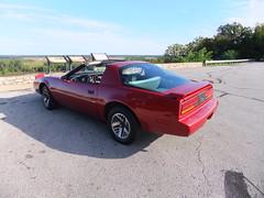 muscle car(0.0), automobile(1.0), automotive exterior(1.0), vehicle(1.0), performance car(1.0), pontiac firebird(1.0), land vehicle(1.0), convertible(1.0), sports car(1.0),