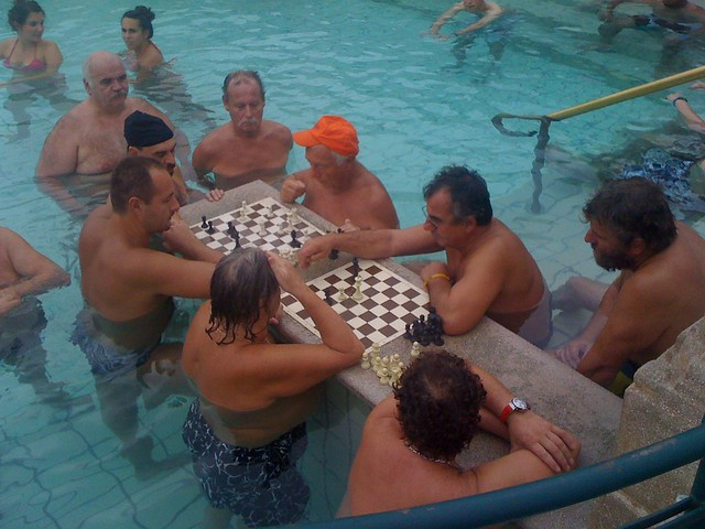 Chess Players in the Pool