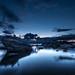 Bonsai twilight by kern.justin