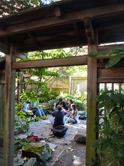 Naturalist Japanese Garden