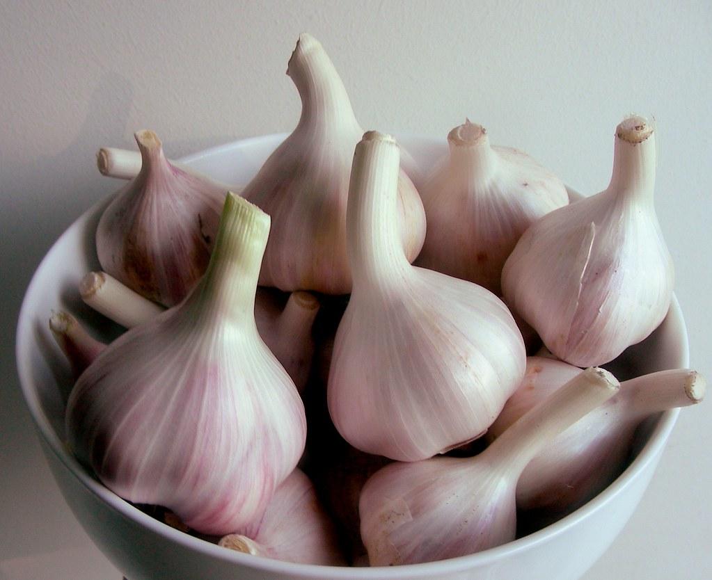 garlic-bowl