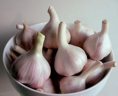 onion(0.0), red onion(0.0), shallot(0.0), plant(0.0), vegetable(1.0), garlic(1.0), produce(1.0), food(1.0),