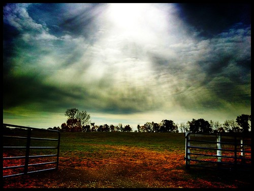 The field #ProHDR #Camera+ #iphoneography