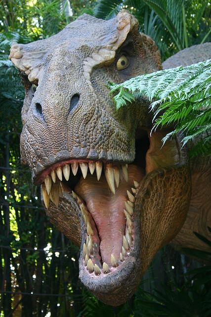 Tyrannosaurus Rex (head on), Jurassic Park - Islands of ...