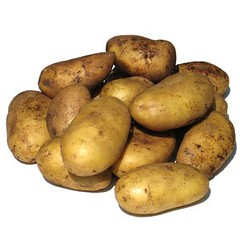 plant(0.0), vegetable(1.0), potato(1.0), produce(1.0), food(1.0), root vegetable(1.0),