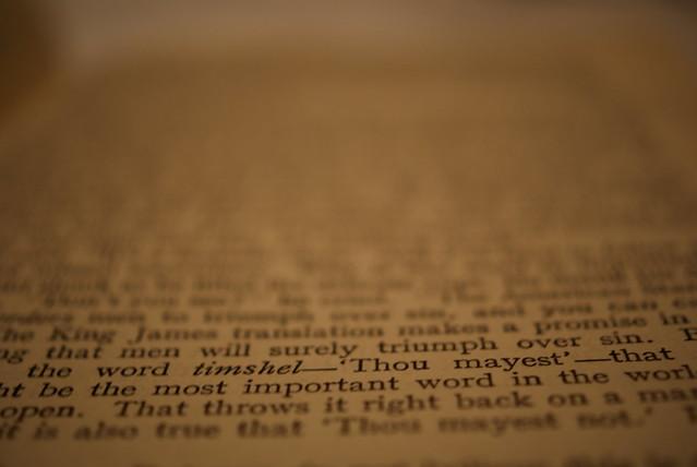 timshel essay