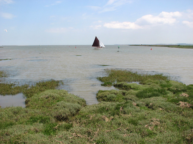 Oare Creek near Faversham