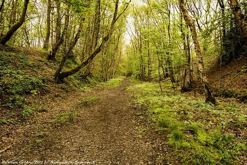 rishworthbranchline ryburnvalley calderdale abandoned railway woodland trackbed outdoor path