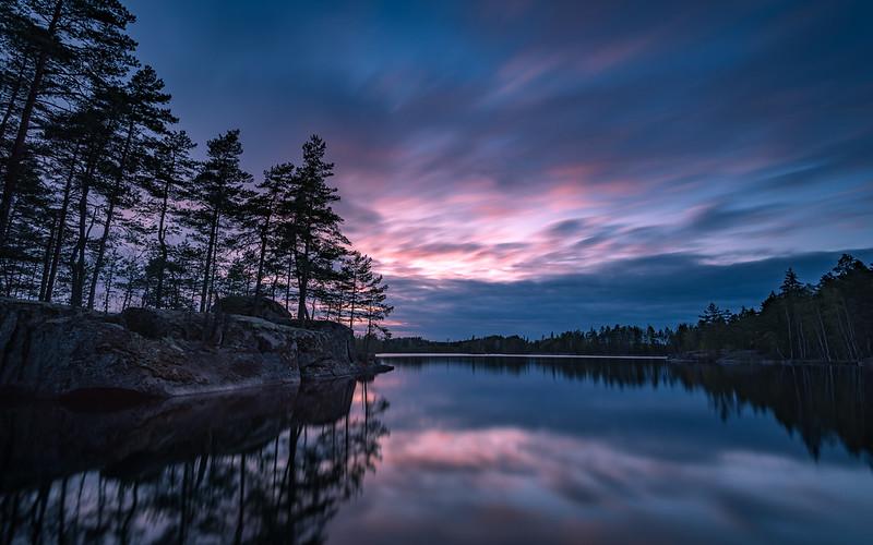 Forest lake dusk