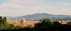 Firenze IX, Toscana, Italy