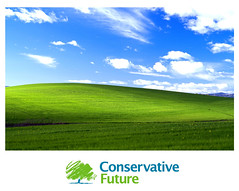 Conservative future - NHS poster