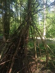 Stick Fort at Minor's Corner County Park