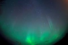 aurora at whitehorse