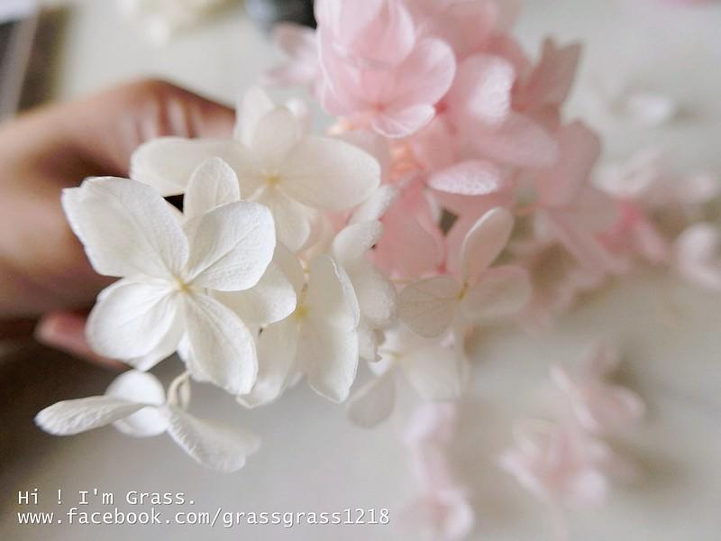 CIMG3956_副本