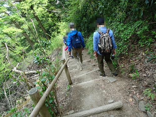 高尾山の4号路