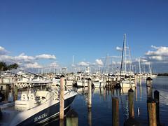 Marine, Miami, Florida