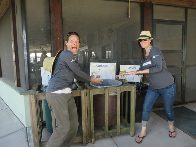 Seagrass Survey 2017 - Composting 4