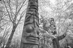 More Occidental Park Totems
