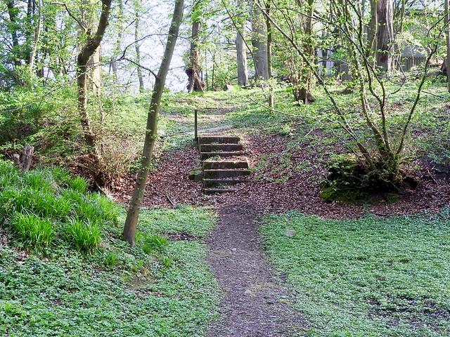 Danestone Country Park Aberdeen Scotland 2017