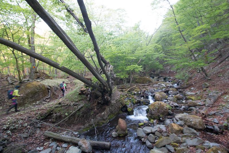 20150510-皇海山-0079.jpg