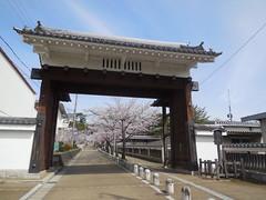 jap 2013 iga-ueno 012