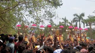 Thrissur Pooram 2017 - 01