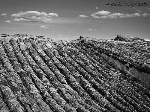 Tile roof hills / Colinas de teja
