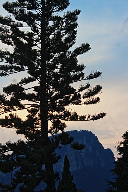 Cerro Cabezon