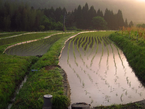 01GW - 191 countryside, kyoto pref