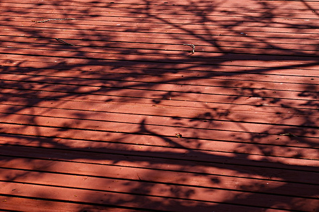 Stretched: Cottonwood Shadow on Deck